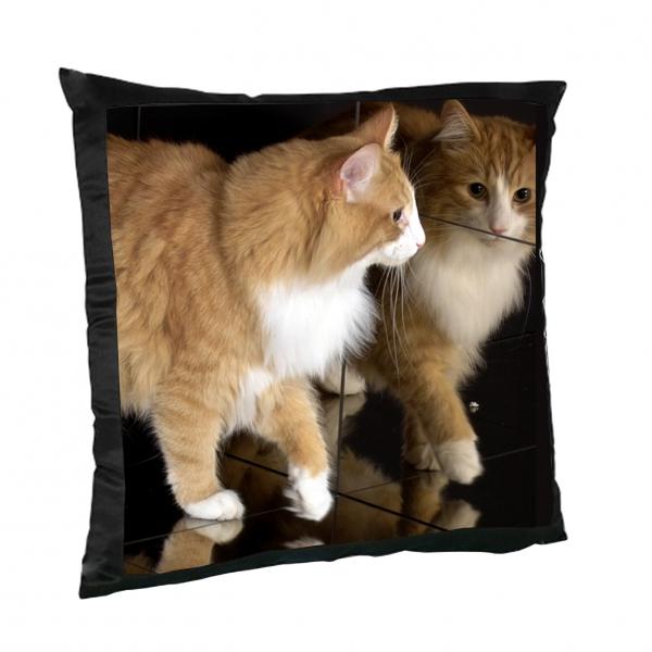kissen schwarz mit fotodruck t shirts geschenke selbst gestalten. Black Bedroom Furniture Sets. Home Design Ideas